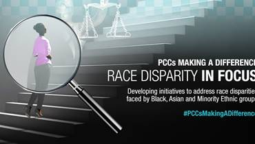 Front cover of Race Disparity in Focus